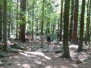Léto s Lokomotivou 2018 - výlet do Janovic,rozhledna Čáp, Bischofstein